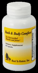 Back & Body Comfort v2